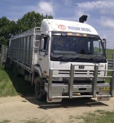 2 Pen Cattle Crate Nissan UD CWB450 Truck for sale NSW