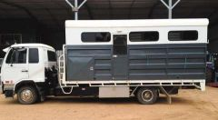 2008 UD MK265 3 Horse Angle Load Horse Truck Transport for sale NSW