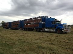 2010 Mack Titan Truck 3x1994 Byrnes 2 Deck Cattle Crates Chassis Line Dolly