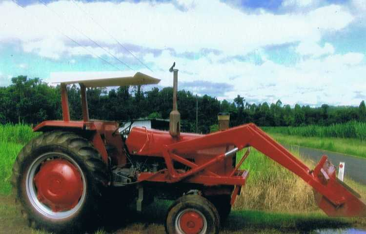 Tractors for sale Nth Qld Masey Ferguson 265 & 135 - Fiat 550 - Int 434