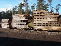 Specialty Tasmanian Timber Business for sale TAS Elizabeth Town