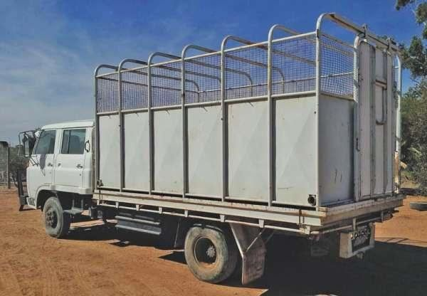 Isuzu Dual Cab 5 Horse Truck Transport for sale Vic
