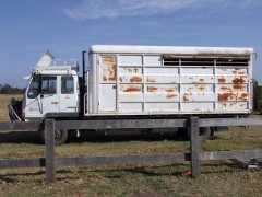Horse Transport for sale NSW Mitsubishi FK4187A 4 Horse Truck