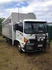 2007 HIno FD Horse Truck for sale QLD