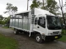 7/8 Horse/cattle crate Horse Transport for sale Quilaligo NSW