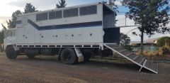Hino 4 Horse Truck Horse Transport for sale Vic Toolern Vale