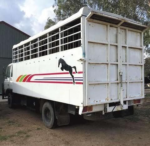 1984 International N1630 6 Horse Angle Load horse Truck Transport for sale Vic