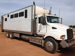Kenworth T300 4 Large Horse Truck Horse Transport for sale WA Darkan